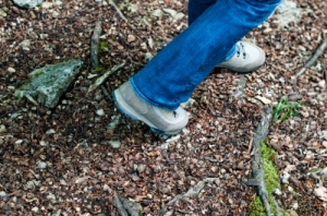 Getting outside is great for us in all kinds of ways. A power walk in the outdoors is inexpensive and as close as the other side of your front door. (Image courtesy of franky242 / FreeDigitalPhotos.net)
