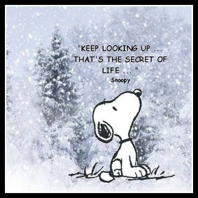 Snoopy is a smart little pup. Even when everyone around you is looking down, keep your head up and your demeanor calm. Stuff will work itself out.