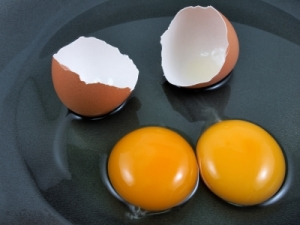 A pair of eggs. (Image courtesy of nixxphotography / FreeDigitalPhotos.net)
