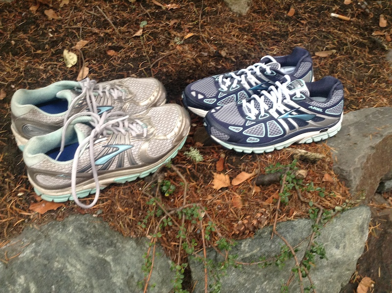 Ah, the changing of the guard. Goodbye old shoes that carried me through 500 miles of bliss. And, hello 2014 model! Shoe companies like to get cute with color schemes year to year. (Brooks Arial, by the way, if you're wondering. Excellent motion-control shoe for overpronators like me.)